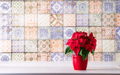 The Blooming Blog: Poinsettias