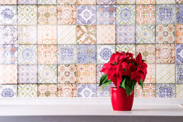 poinsettia-kitchen-countertop-wall-with-old-colored-tiles