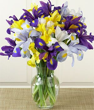 The Blooming Blog:  The Greek Goddess, Iris